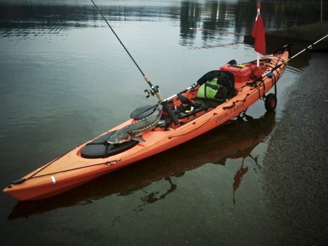 The_Nothings_Ocean_Kayak_Trident_15