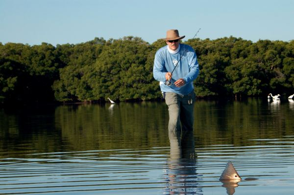 Stalking tailing redfish on Fort De Soto flats