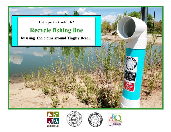 recyclefishinglineposter