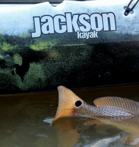 Redfish and Jackson Cuda
