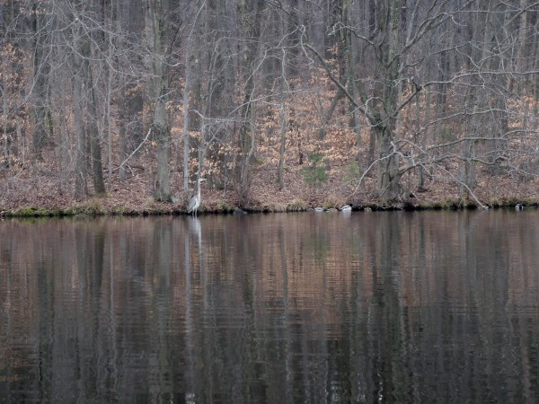 kayak fishing lake view