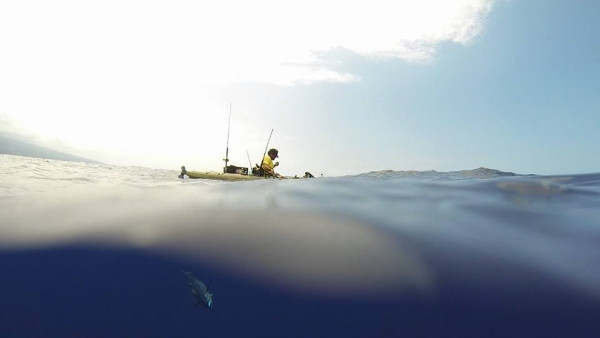 kayak fishing the kona coast hawaii