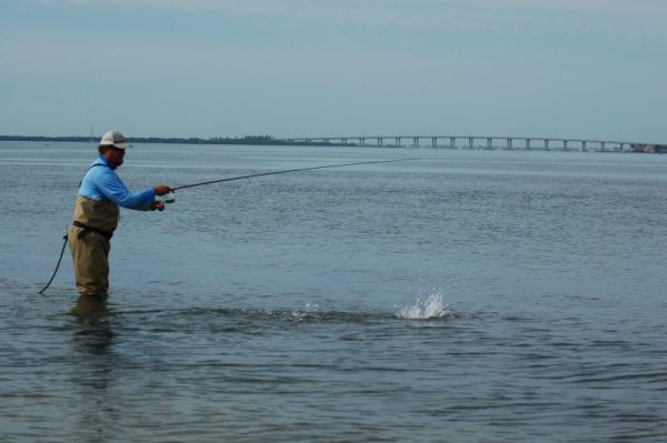 Bill Howard fighting a Tampa Bay Ladyfish