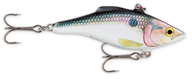 rattlin_rapala_sd