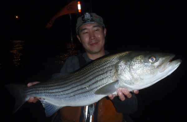 HRBT kayak fishing Striper