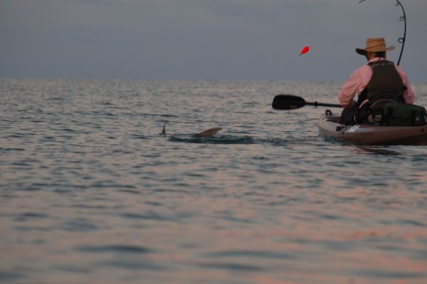 tarpon_kayak_fishing_fight_float
