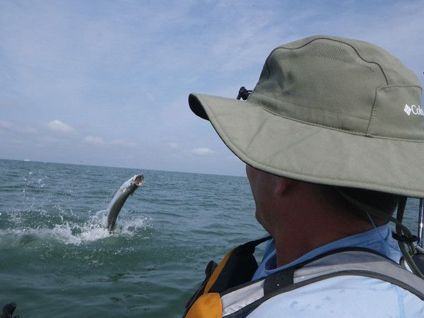 tarpon_kayak_fishing_jump