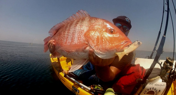pensacola red snapper kayak fishing