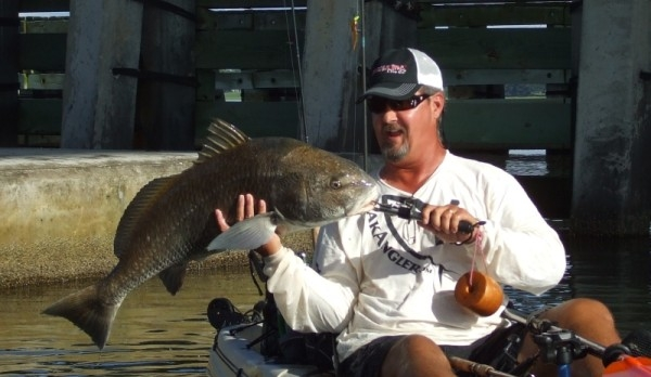 The author, Bill Howard with a 26 lb Black Drum