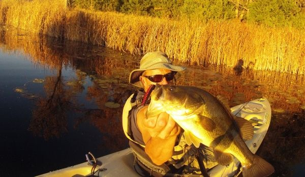 October Midwest Fishing Report 2012