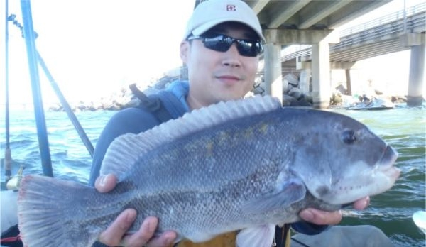 Tautog Fishing Rig