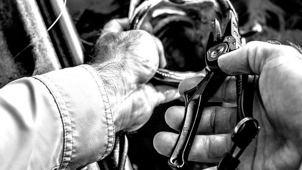 Choosing The Best Fishing Pliers For Your Kayak