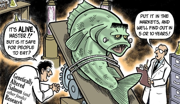 Bioengineering A Frankenfish?