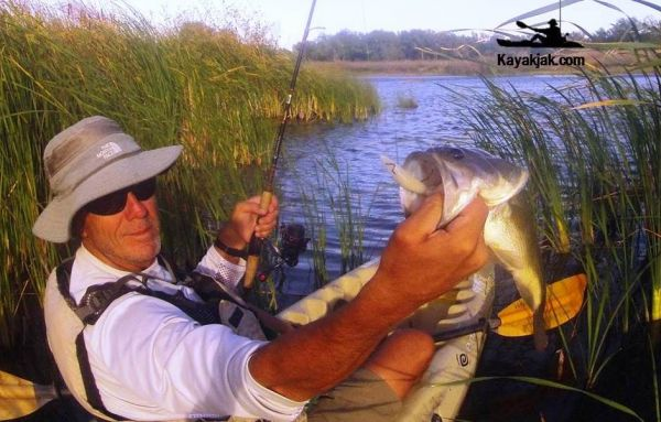 Feeding the passion for kayak fishing.