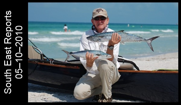 "My buddy Pat was able to bring in a just over the slot limit (24"" to the fork) schoolie and a nice Spanish Mackerel for the grill."
