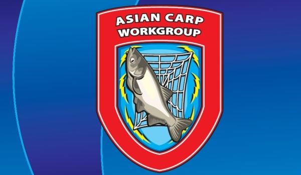 Long and Short Term Plans to Combat Asian Carp