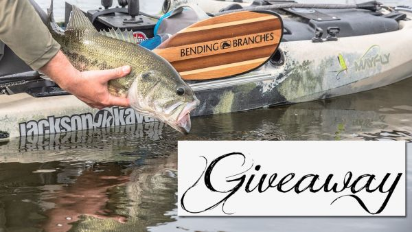 Bending Branches June Giveaway