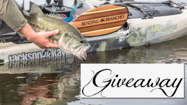 Bending Branches June 2019 Giveaway Winners
