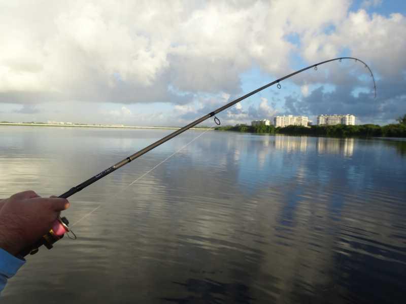 13 omen black review 1 1 yakangler for 13 fishing omen