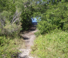 Fort Desoto mangrove cut