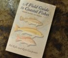 A field Guide to Coastal Fishes from Maine to Texas