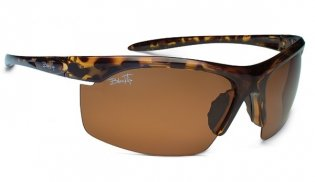 blacktip reef sunglasses
