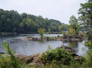 Coosa River Tailwater Access