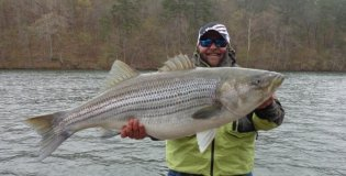 48 pounder caught on melton hill lake