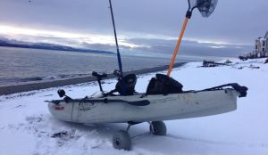 Winter Salmon Fishing in Alaska