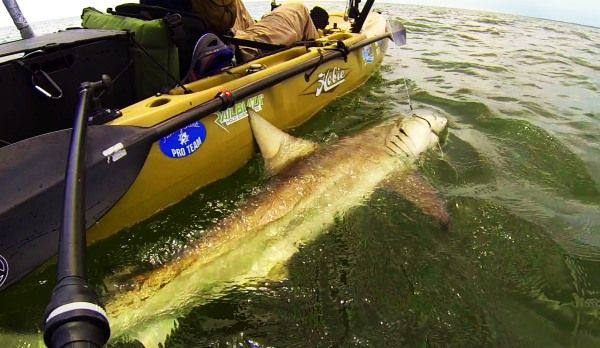 A Guide to Filming Kayak Fishing - Part 2