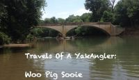 Travels of a YakAngler - Woo Pig Sooie