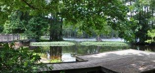 bennett mill pond