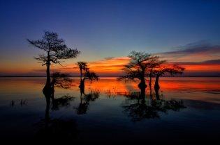 Blue Cypress Lake Florida